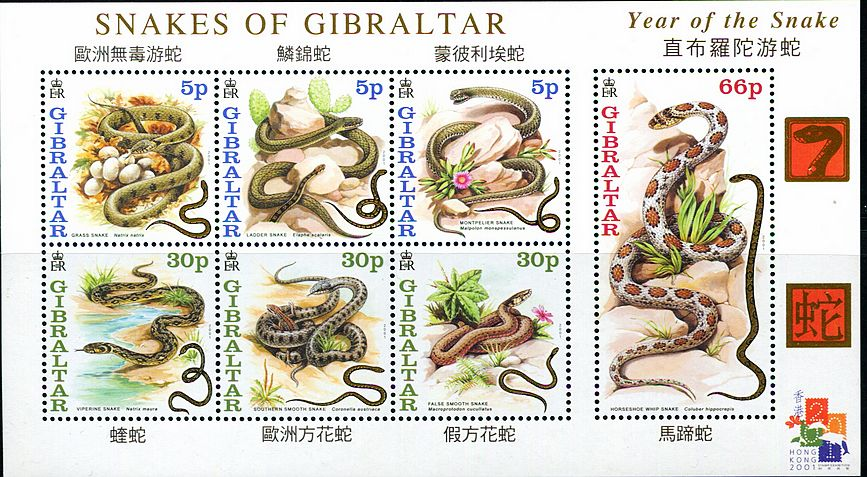 直布罗陀2001蛇年生肖各种蛇小全张图片